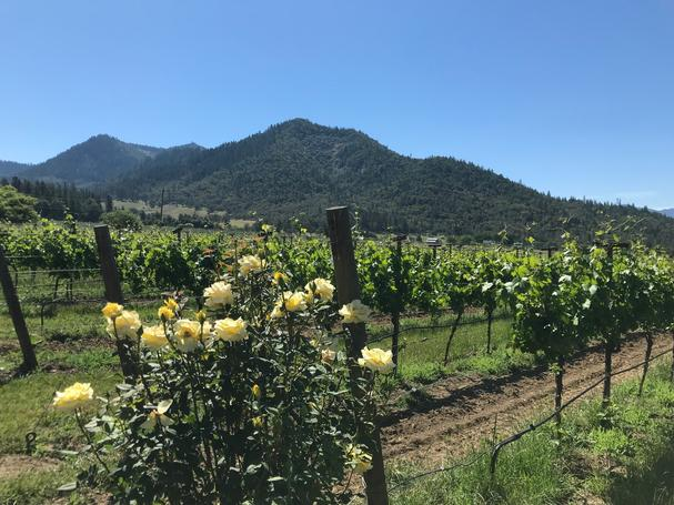 Troon Vineyard Southern Oregon