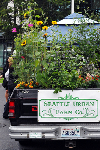 seattle urban farm