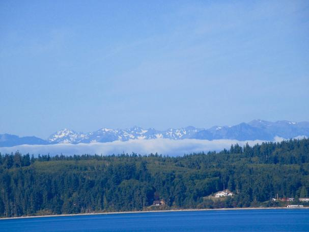 snowy peaks of the Olympic Mountains