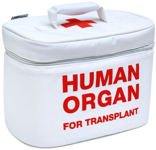 Organ Transport Lunch Cooler