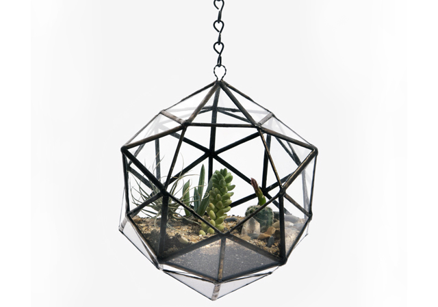 Dodecahedron Terrarium by Score + Solder