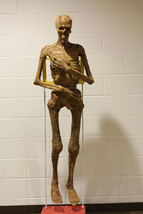 ben campbell mcdonald's mummy