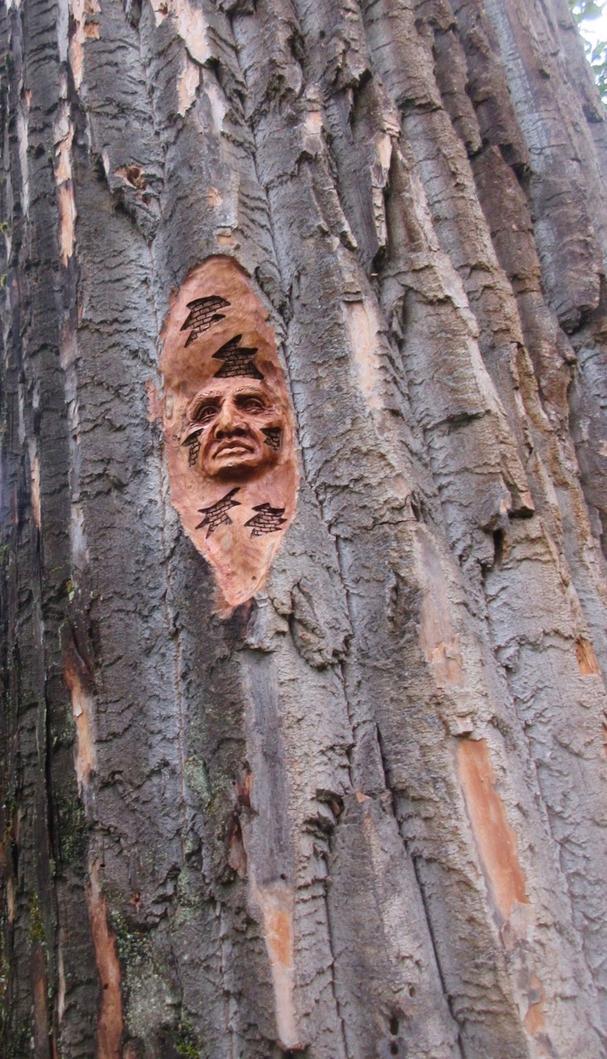 Elmer Gunderson tree carving