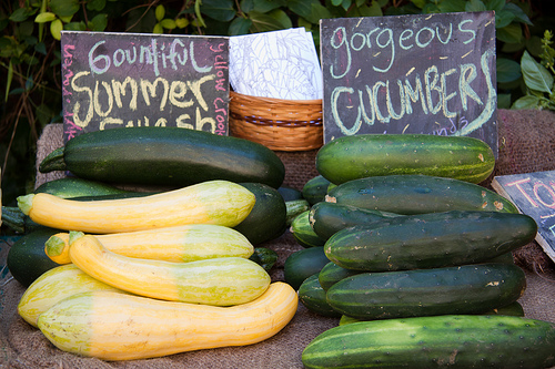 Summer Squash & Cucumber