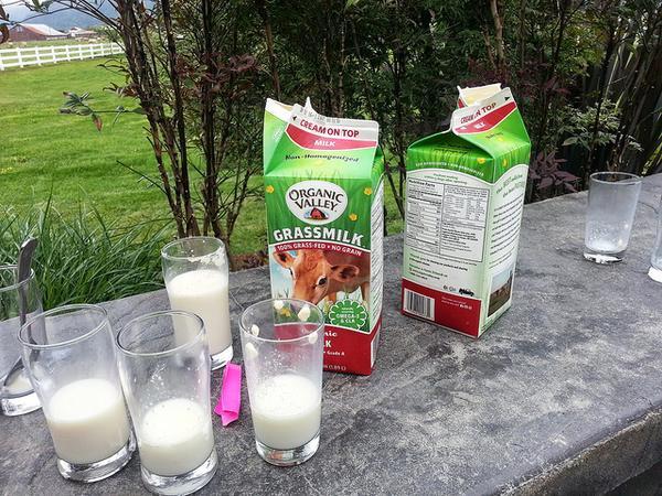 Milk tasting