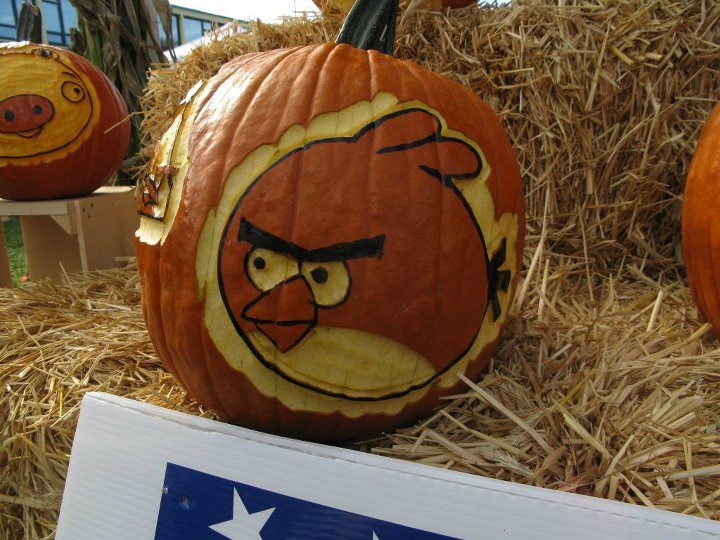 carved angry birds jack-o'-lanterns