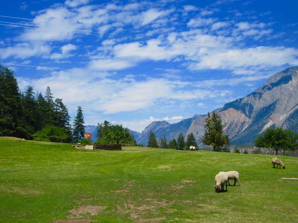 Lillooet Sheep Pasture Golf Course