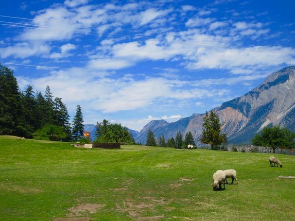 Lillooet Sheep Pasture Golf Course